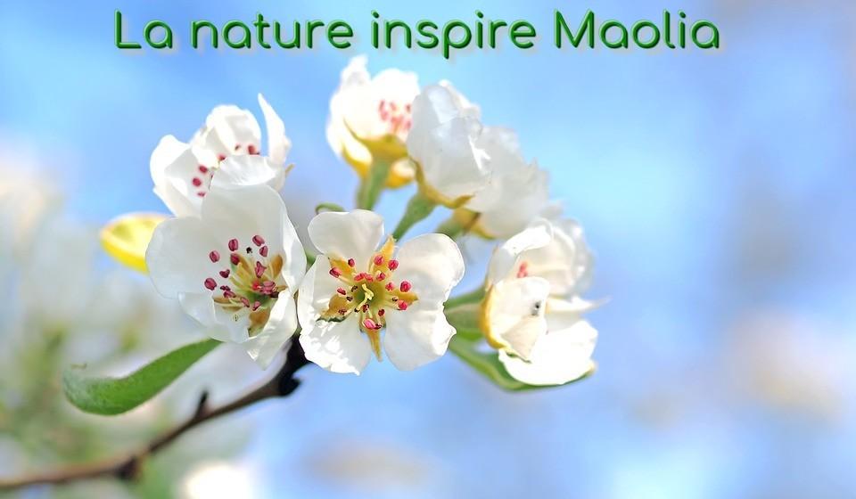 Le printemps de Maolia